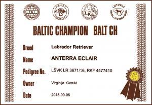 BALT CH Anterra-Eclair