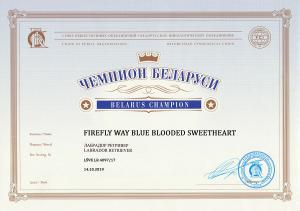 BY CH Firefly Way Blue Blooded sweetheart--