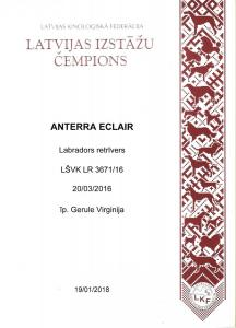 LV CH Anterra-Eclair